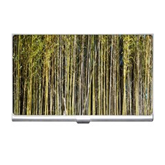 Bamboo Trees Background Business Card Holders