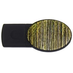 Bamboo Trees Background USB Flash Drive Oval (1 GB)