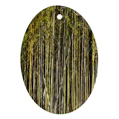 Bamboo Trees Background Oval Ornament (Two Sides)