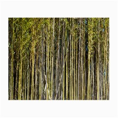 Bamboo Trees Background Small Glasses Cloth (2-Side)