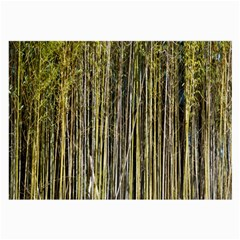 Bamboo Trees Background Large Glasses Cloth