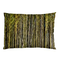 Bamboo Trees Background Pillow Case