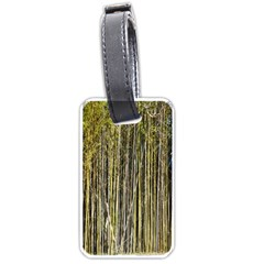 Bamboo Trees Background Luggage Tags (one Side)