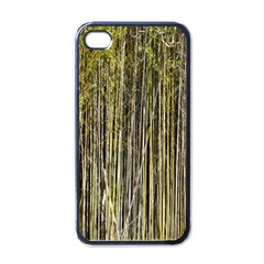 Bamboo Trees Background Apple Iphone 4 Case (black)