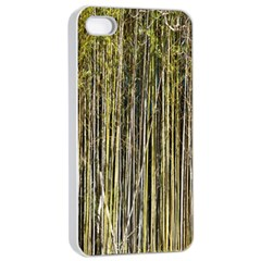Bamboo Trees Background Apple iPhone 4/4s Seamless Case (White)