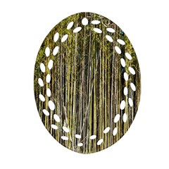 Bamboo Trees Background Ornament (Oval Filigree)