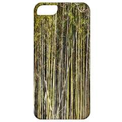 Bamboo Trees Background Apple Iphone 5 Classic Hardshell Case
