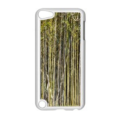 Bamboo Trees Background Apple iPod Touch 5 Case (White)