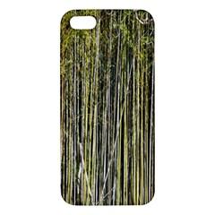 Bamboo Trees Background Apple iPhone 5 Premium Hardshell Case