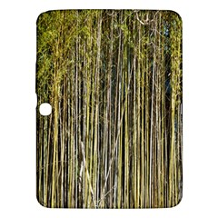 Bamboo Trees Background Samsung Galaxy Tab 3 (10 1 ) P5200 Hardshell Case