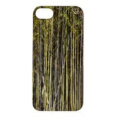 Bamboo Trees Background Apple iPhone 5S/ SE Hardshell Case
