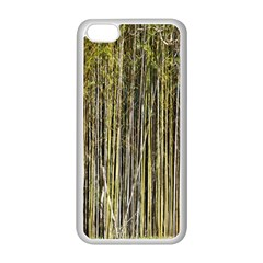 Bamboo Trees Background Apple iPhone 5C Seamless Case (White)