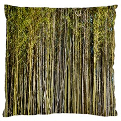 Bamboo Trees Background Standard Flano Cushion Case (two Sides)