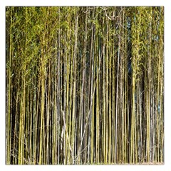 Bamboo Trees Background Large Satin Scarf (Square)