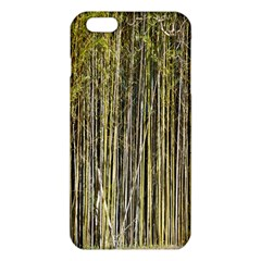 Bamboo Trees Background Iphone 6 Plus/6s Plus Tpu Case