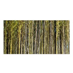 Bamboo Trees Background Satin Shawl