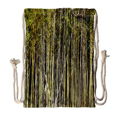 Bamboo Trees Background Drawstring Bag (Large)