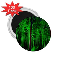 Spooky Forest With Illuminated Trees 2 25  Magnets (100 Pack)