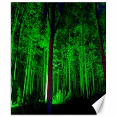 Spooky Forest With Illuminated Trees Canvas 8  x 10