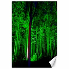 Spooky Forest With Illuminated Trees Canvas 12  X 18