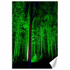 Spooky Forest With Illuminated Trees Canvas 20  x 30