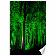 Spooky Forest With Illuminated Trees Canvas 24  x 36