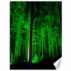 Spooky Forest With Illuminated Trees Canvas 36  x 48
