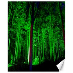 Spooky Forest With Illuminated Trees Canvas 11  X 14