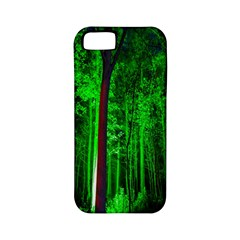 Spooky Forest With Illuminated Trees Apple iPhone 5 Classic Hardshell Case (PC+Silicone)