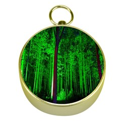 Spooky Forest With Illuminated Trees Gold Compasses