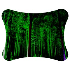 Spooky Forest With Illuminated Trees Jigsaw Puzzle Photo Stand (Bow)
