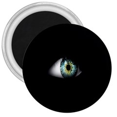 Eye On The Black Background 3  Magnets