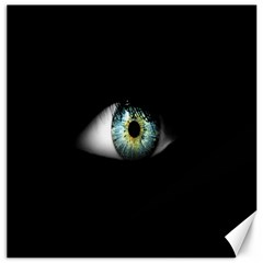 Eye On The Black Background Canvas 12  X 12