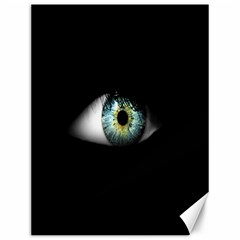 Eye On The Black Background Canvas 12  X 16