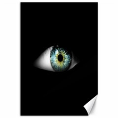 Eye On The Black Background Canvas 12  x 18