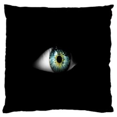 Eye On The Black Background Large Flano Cushion Case (two Sides)