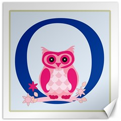 Alphabet Letter O With Owl Illustration Ideal For Teaching Kids Canvas 16  x 16
