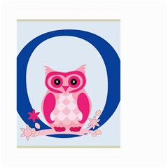 Alphabet Letter O With Owl Illustration Ideal For Teaching Kids Large Garden Flag (Two Sides)