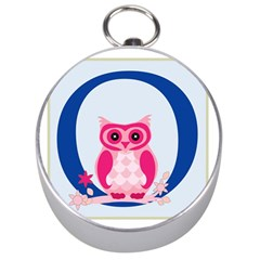 Alphabet Letter O With Owl Illustration Ideal For Teaching Kids Silver Compasses
