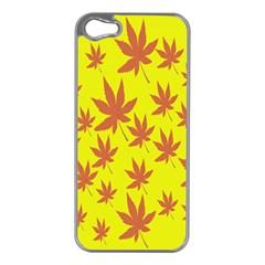 Autumn Background Apple iPhone 5 Case (Silver)