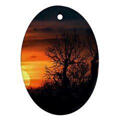 Sunset At Nature Landscape Ornament (Oval)