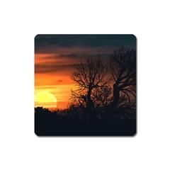 Sunset At Nature Landscape Square Magnet