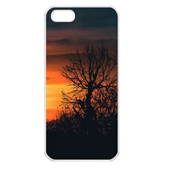 Sunset At Nature Landscape Apple iPhone 5 Seamless Case (White)