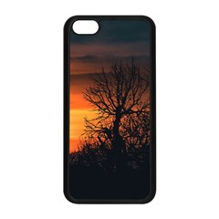 Sunset At Nature Landscape Apple iPhone 5C Seamless Case (Black)
