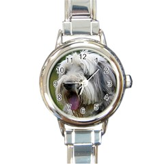 Bearded Collie Round Italian Charm Watch
