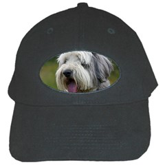 Bearded Collie Black Cap