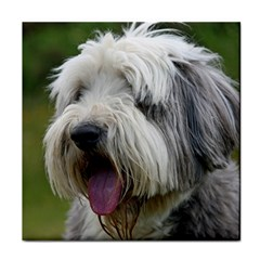 Bearded Collie Tile Coasters