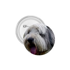 Bearded Collie 1.75  Buttons