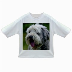 Bearded Collie Infant/Toddler T-Shirts