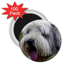 Bearded Collie 2.25  Magnets (100 pack)